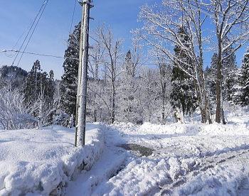雪ばかりな